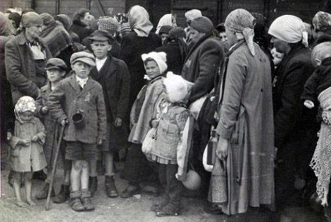 венгерские евреи